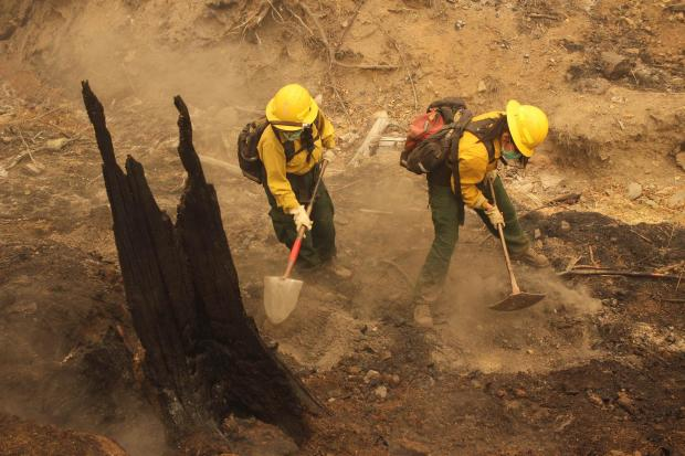 Two firefighters use hand tools to dig out the roots of a charred stump to remove residual heat
