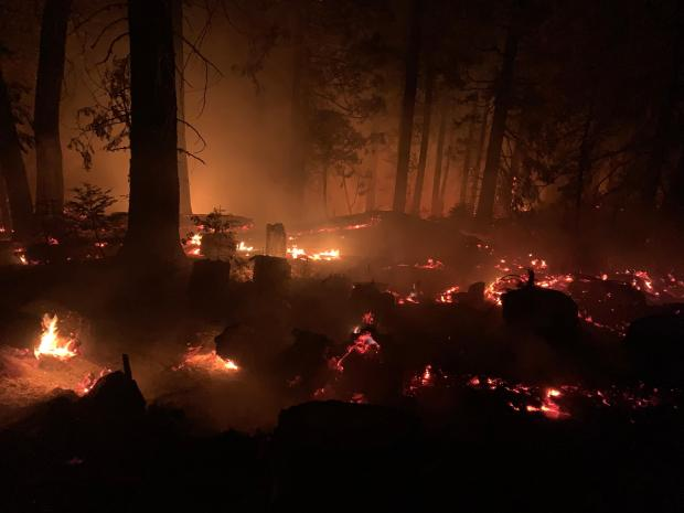 Creek Fire, holding line, 7th Marine Battalion