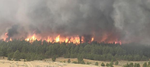 North end of Peterson fire Sunday, July 11, 2021
