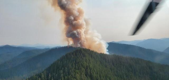 Smoke column from Janus Fire rising up from forested ridge