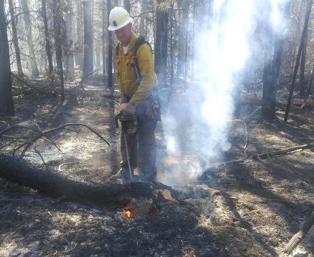 Photo of a man in fire clothes using a chainsaw to cut a smoldering tree.