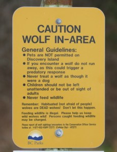 Caution Wolf In-Area