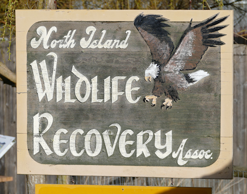 North Island Wildlife Recovery Association sign