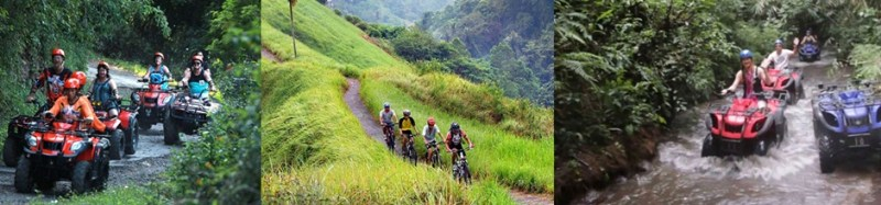 Bali ATV Ride and Cycling Tour