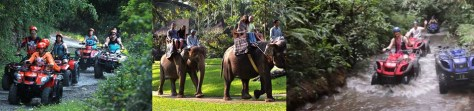Bali ATV and Elephant Ride Tour