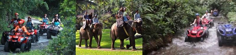 Bali Ayung Rafting and Bali Safari Park Tour