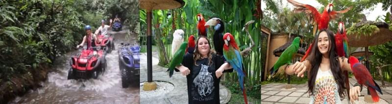 Bali ATV ride and Bali Bird Park Tour