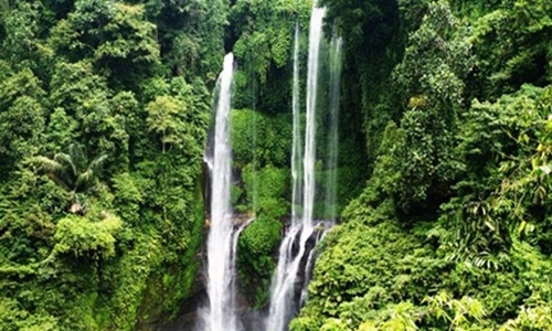 Sekumpul Waterfall Tour Package