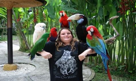 Bali Bird Park and Tanah Lot Tour