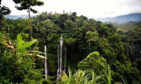 Sekumpul waterfall Tour