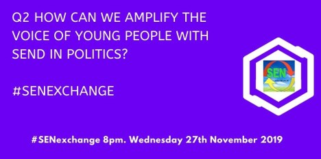 How can we amplify the voice of young people with SEND in politics?