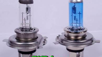 Photo of Halogen Bulbs – How it is made ?