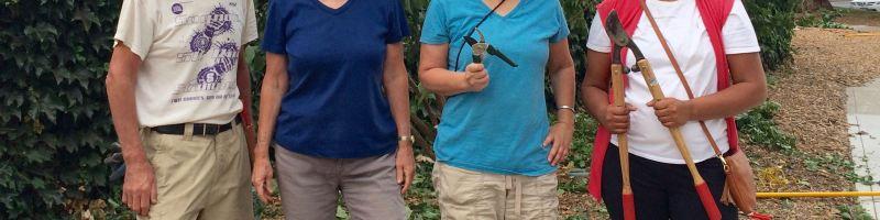 Garden Shares, Fruit Trees, Pollinators, & Chickens
