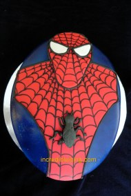 The One and Only Spiderman!