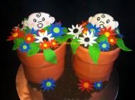 #176- Twin Pots