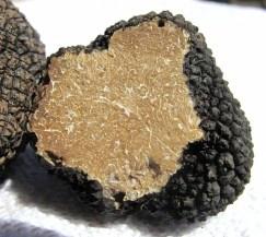 Diamants noirs ou truffe