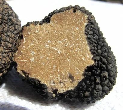 La Truffe Noire de la Drôme