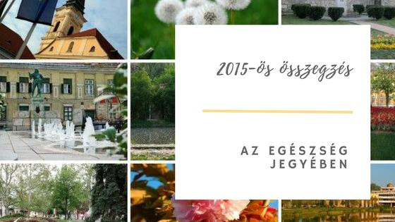 osszegzes 2015 egeszseg blog