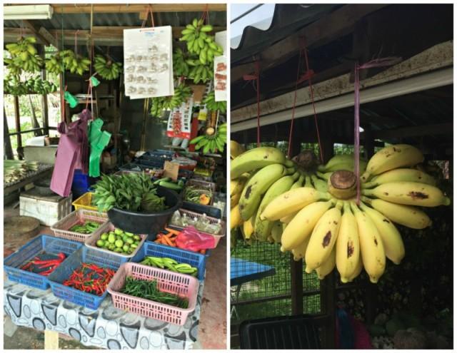 banan-langkawi-malajzia