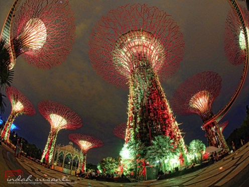 Gardens by the Bay by Indah Susanti