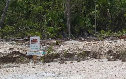 secret-beach-sign-wordpress