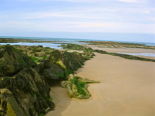 Inspirational beach