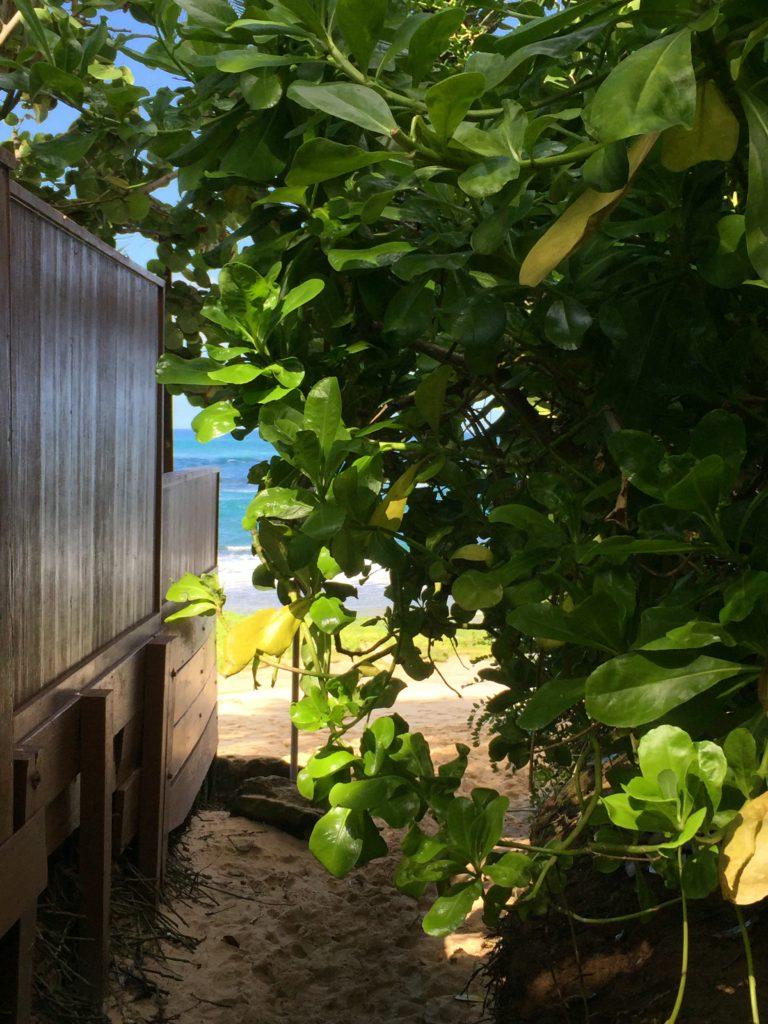 papiloa beach
