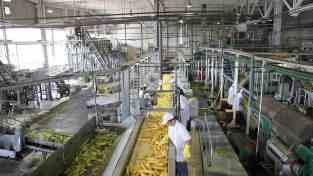industria-de-la-alimentacion-maquinaria-para-el-procesado-de-alimentos.jpeg