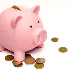 Save Money FSA