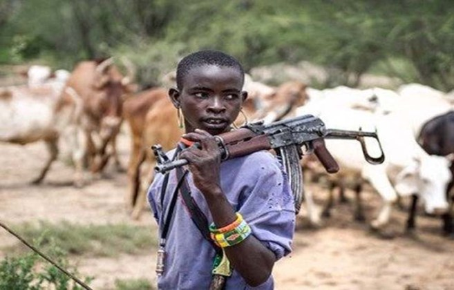 Image result for PDP chieftain wants F.G. to end farmers/herdsmen clashes