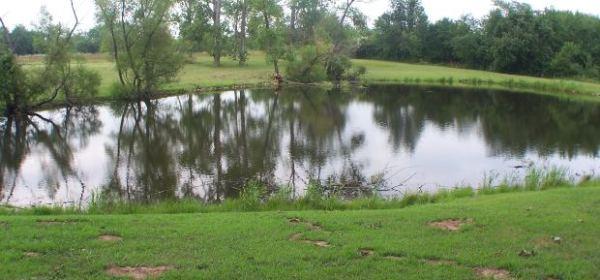 Retention-pond
