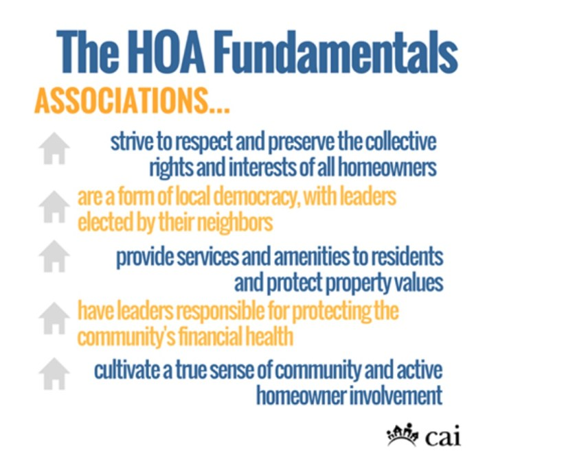CAI HOA Fundamentals info graphic