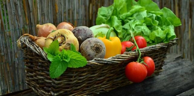 Garden-vegetables-basket-organic-farm