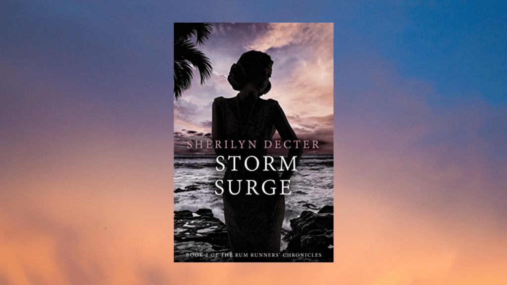 featured photo for Storm Surge by Sherilyn Decter