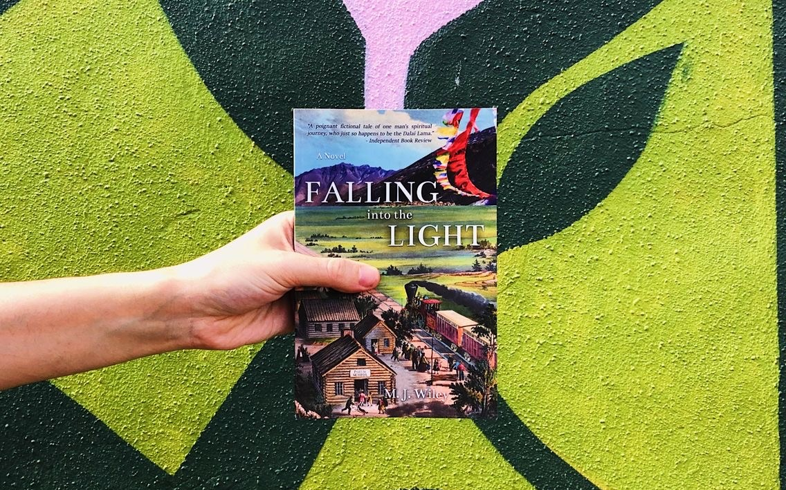 Falling Into the Light by MJ Wiley paperback photo