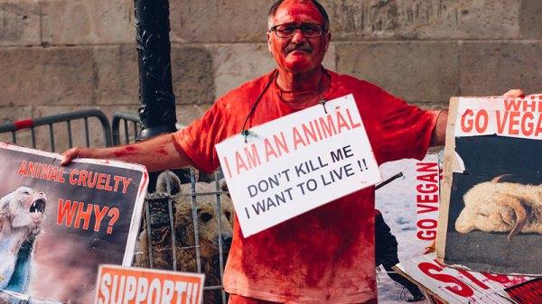 PETA Protesters
