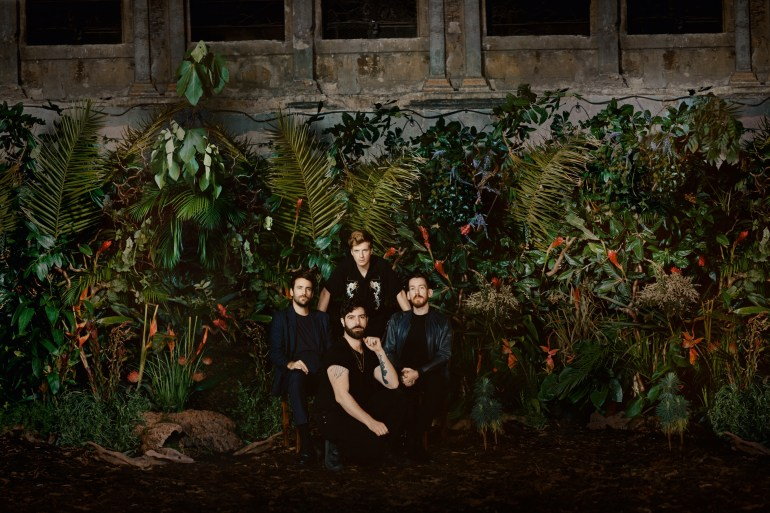 Foals Review on IMR