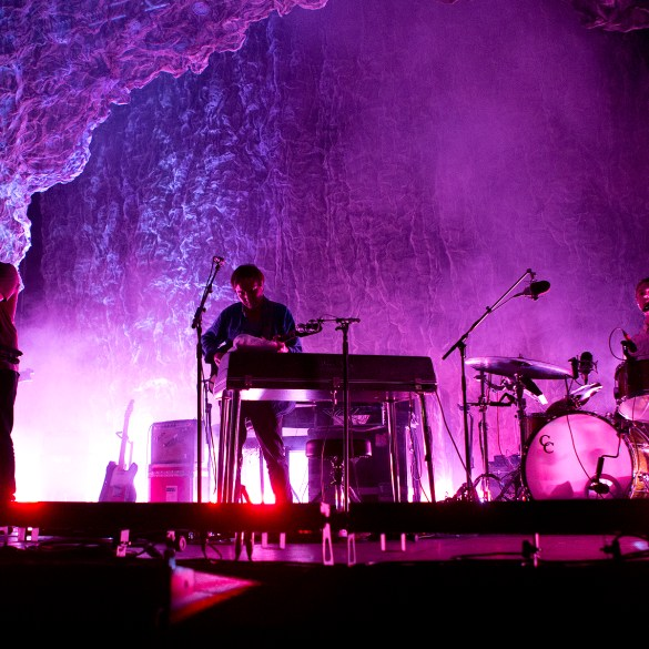 Grizzly Bear Live Show 2018