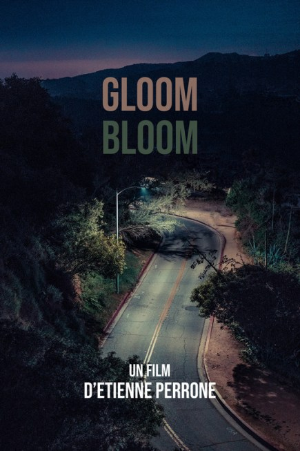 Gloom // Bloom