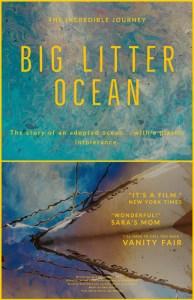 Big Litter Ocean