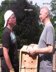 Bee Seed