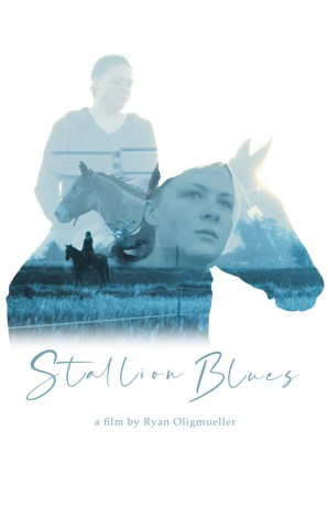 Stallion Blues