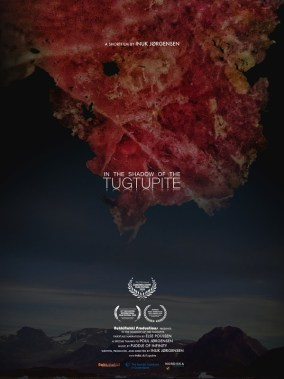 In the Shadow of the Tugtupite