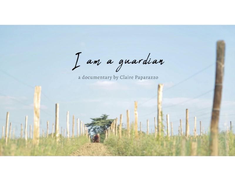 I am a guardian