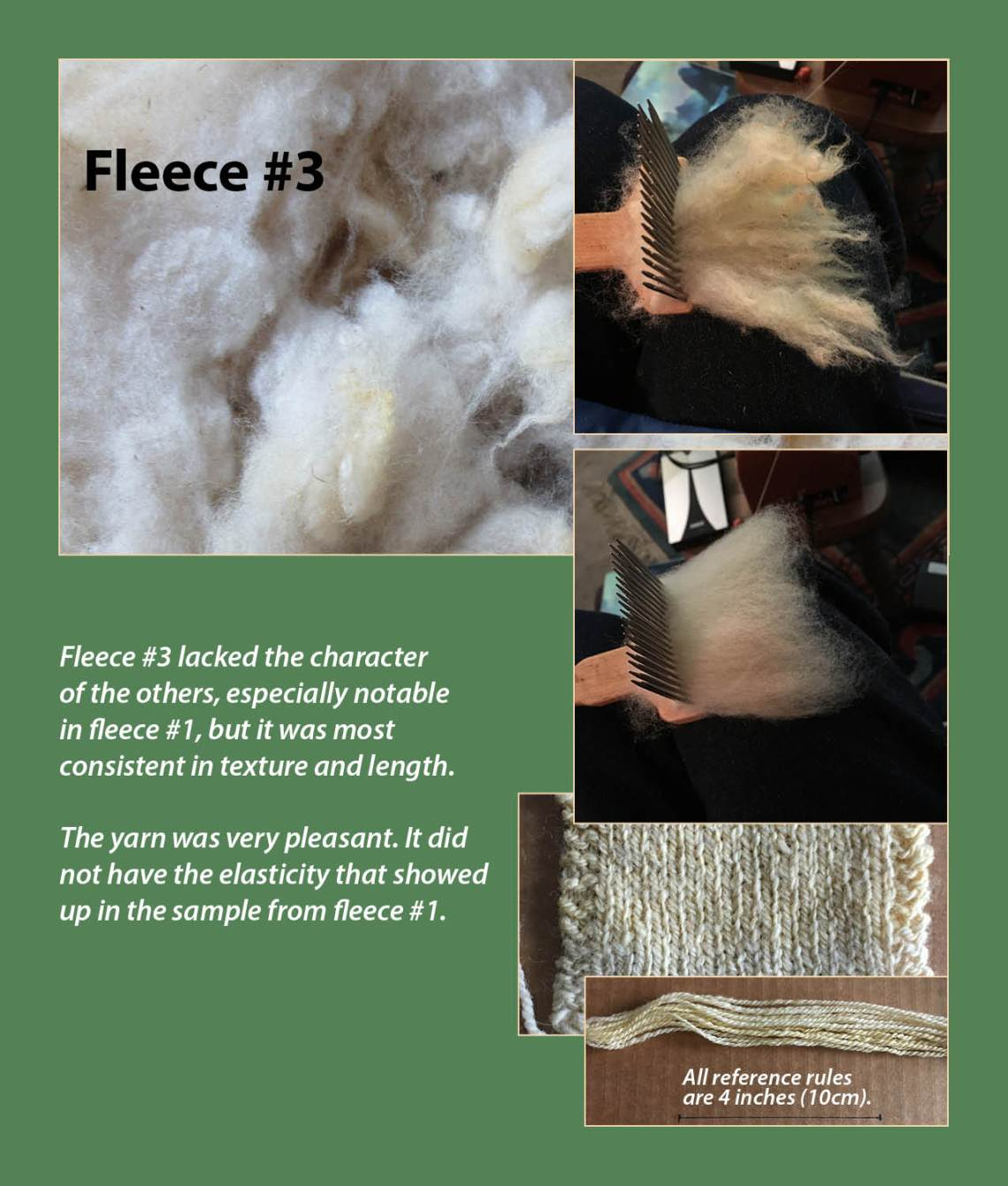 Fleece #3 lacked the character of the others, especially notable in fleece #1, but it was most consistent in texture and length. The yarn was very pleasant. It did not have the elasticity that showed up in the sample from fleece #1.