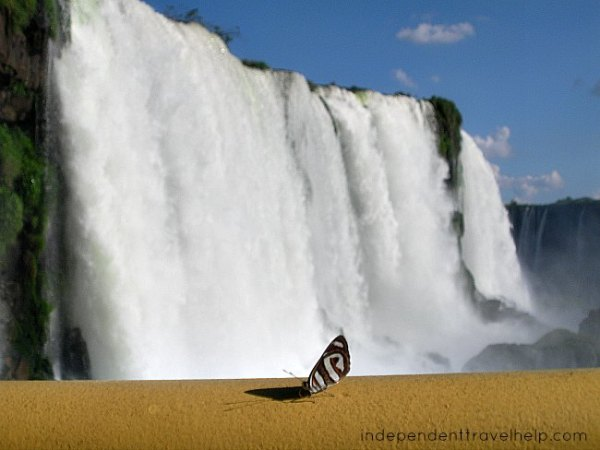 romantic destination, romance, waterfall, brazil Iguacu, Iguazu, butterly, insect