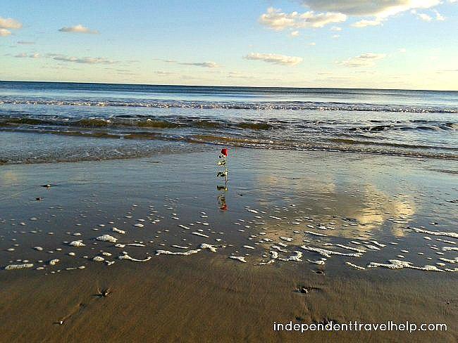 valentine, valentine's day, rose, sea, uk, bournemouth, england, beach