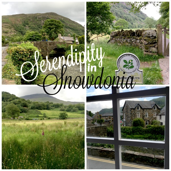 Serendipity in Snowdonia