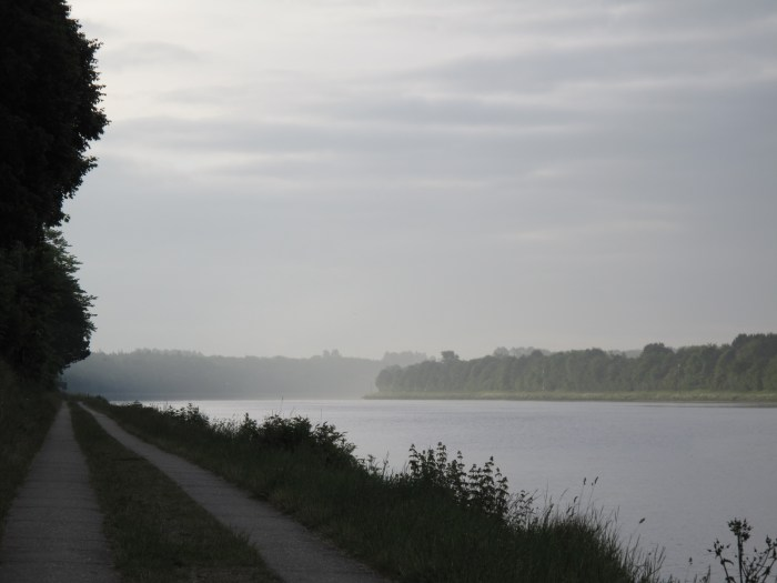 Morgens in Sehestedt