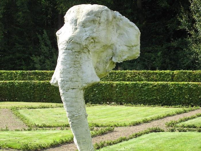 Ein unsichtbarer Elefant - ist das nicht der Hammer?